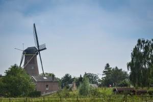Wijk en Aalburg 2